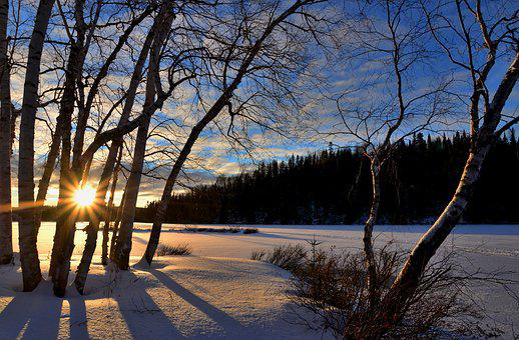 Winter Landscape, Sunset, Twilight, Winter, Trees