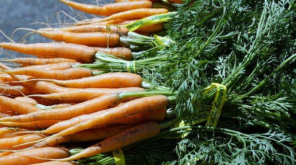 Carrot, Vegetable, Farmers Market