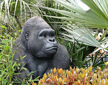 Animal, Gorilla, Fake, Plastic, Wildlife, Wild, Nature
