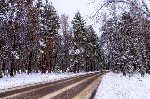 Winter, Road, Forest, Snow, Winter Road, Trees