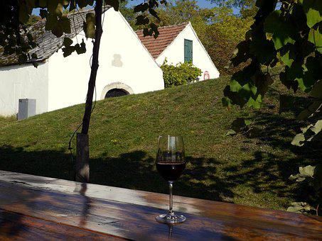 Red Wine, Glass, Cup, Table, Vine, Grass, Trees, House