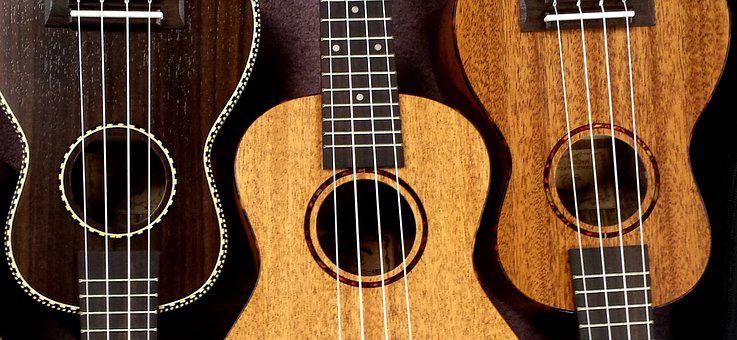 Ukulele, Snail, Ukes, Music, Strings, Instrument