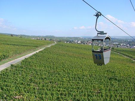 Germany, Rüdesheim, Vineyards, Landscape, Grapevines