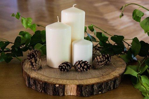 Candles, Wood, Nature, Bark, Donuts