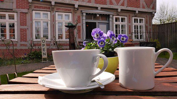 Coffee, Spring, Cafe, Drink, Cake, Relax, Out