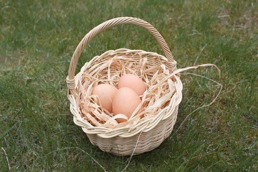 Easter, Egg, Basket, Nest, Easter Eggs