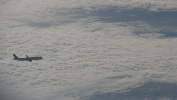 Plane, Airplane, Flight, Travel, Aircraft
