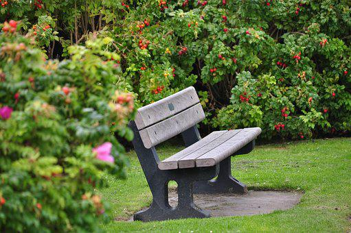 Bench, Garden, Holiday, Rest, Relaxation