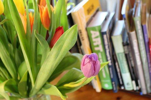 Tulips, Spring, Bulbs, Flowers, Colourful, Books