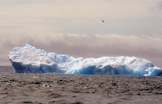 Iceberg, Antarctica, Ice, Cold, Ocean, Frozen