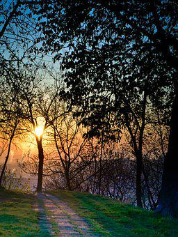 Sun, Sunrise, Nature, Sky, Summer, Landscape, Shadows