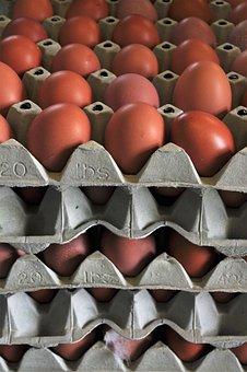 Egg, Chicken Eggs, Hen's Egg, Nutrition, Food