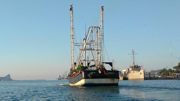 Shrimp Boat, Fishing Boat, Fishing Vessel