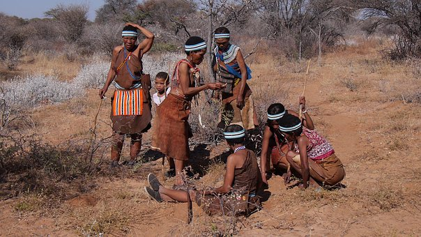 Botswana, Bushman, Group, Collect, Indigenous Culture