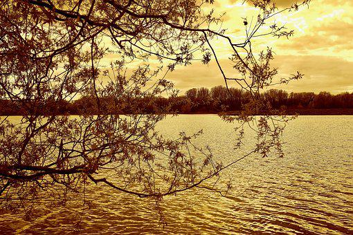 Lake, Trees, Nature, Water, Landscape, Scenery, Sky