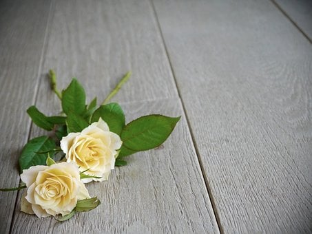 Roses, Bouquet Of Roses, Bouquet, White, Yellow