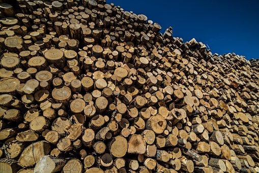 Logs, Wood, Timber, Pile, Pattern, Logging, Stacked