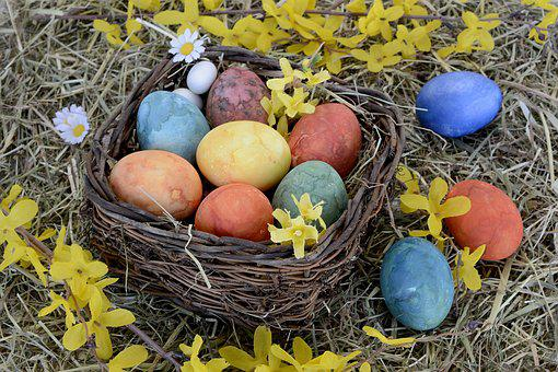 Easter Nest, Nest, Easter Eggs, Colorful, Easter