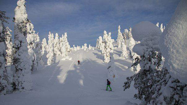 Cross Country Skiing, Finland, Lapland, Wintry