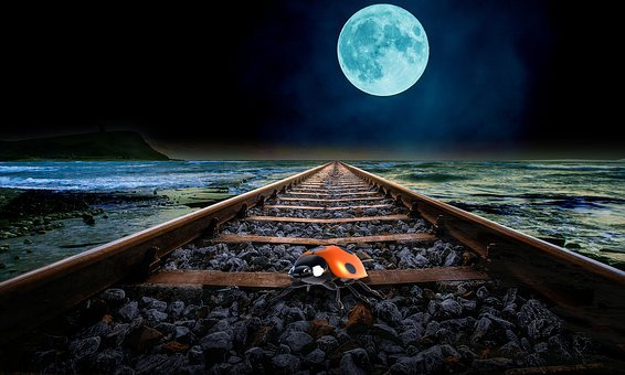 Full Moon, Coast, Gleise, Night, Beetle, Wave, Railway