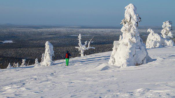 Snow Shoe Snow Shoe Run, Finland, Lapland, Wintry