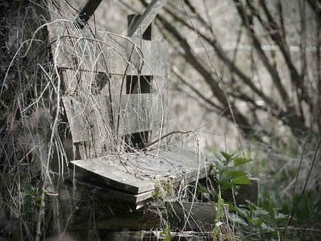 Decay, Bank, Old, Broken, Weathered, Wooden Bench