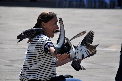 Venice, St Mark's Square, Italy, Venezia, Pigeons