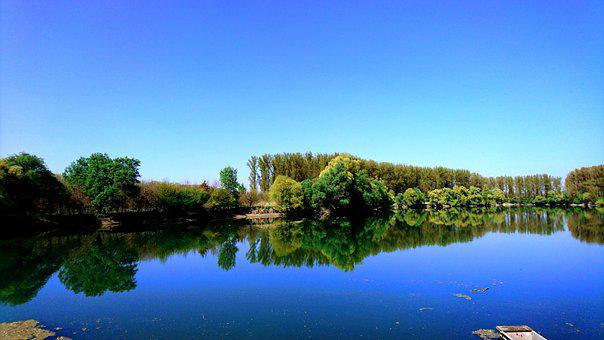Lake, Forest, Sky, Sun, Water, Blue, Green