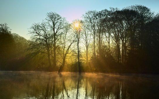 Lake, Fog, Light, Mood, Trees, Sunbeam, Sun, Sunrise