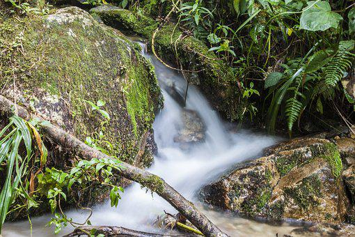 Water, Brook, Natural Water, Nature, Current, Mountain
