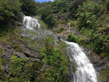 Waterfall, Cairns, Rainforest Waterfalls