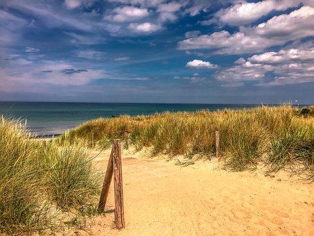 Baltic Sea, Darss, Ahrenshoop, Reed, Coast, Sea