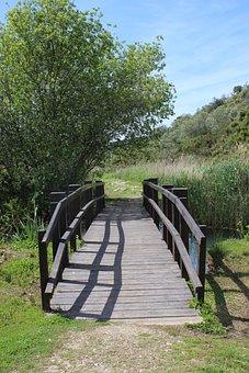 Bridge, River, Landscape, Water, Marshes, Marshland
