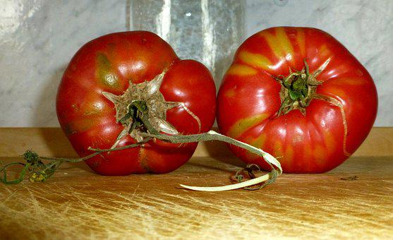 Tomatoes, Red, Old Variety, Vegetables, Kitchen