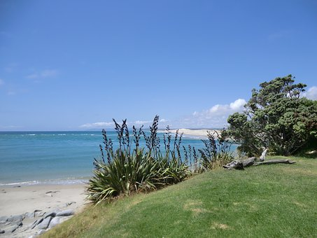 New Zealand, Sea, Rush, Holiday, View, Sky, Water