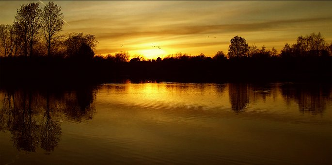 Sunset, Setting Sun, Clouds, Sky, Trees, Warm, Nature