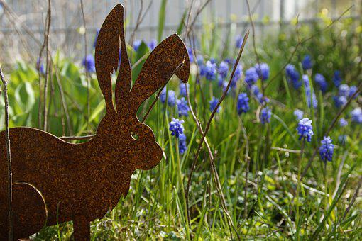 Easter Bunny, Easter, Easter Sunday, Hare, Spring