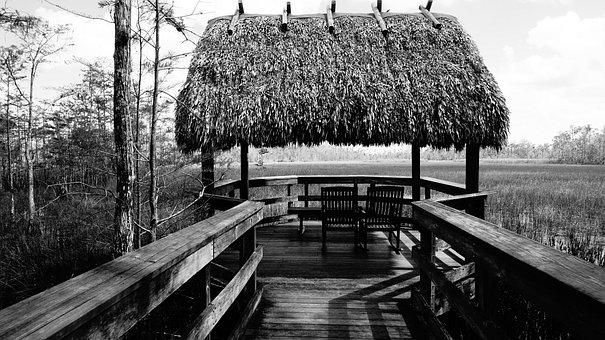 Black And White, Nature, Florida