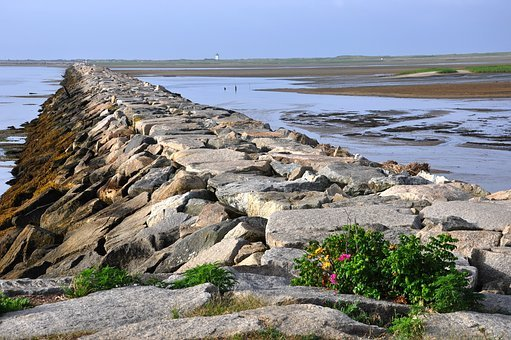 Jetty, Cape Cod, Provincetown, New England, Water