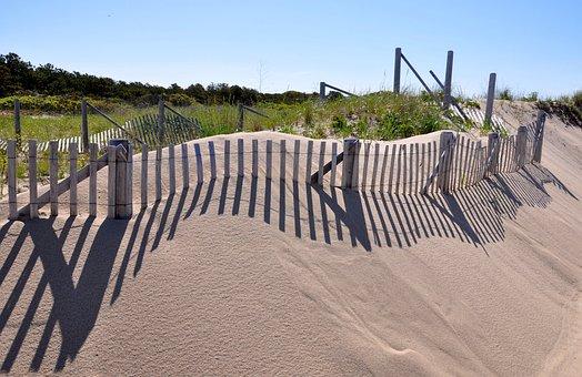 Cape Cod, Provincetown, Dune Grass, Shadows