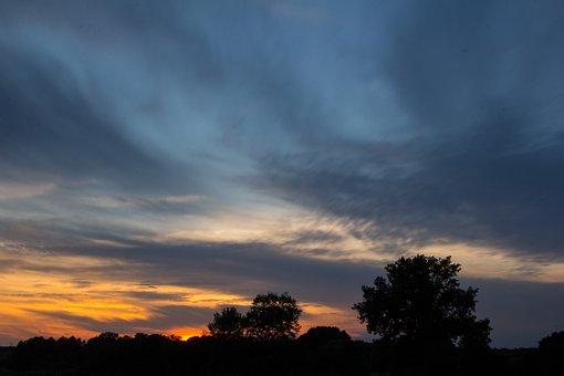 Sunset, Trees, Silhouette, Evening, Nature, Dusk