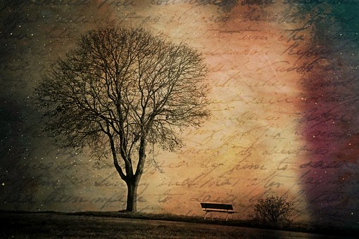 Texture, Background, Tree, Bare Tree, Font, Handwriting
