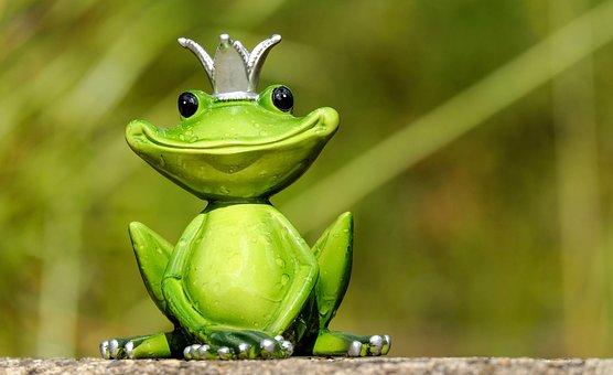 Frog, Figure, King, Cute, Funny, Sweet, Fun, Animal