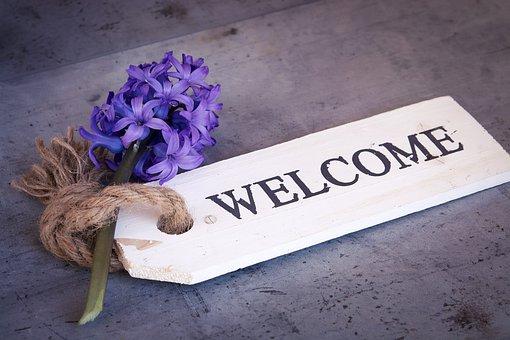 Hyacinth, Flower, Blue, Blue Flower, Spring Flower