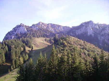 Alpine, Allgäu, Tegelberg, Summit Rise, Nature