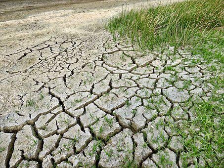 Climate Change, Drought, Climate, Dry, Environment