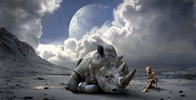 Mood, Landscape, Rhino, Fantasy, Light, Mountains