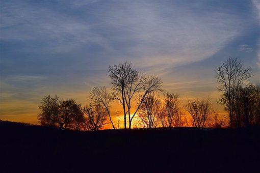 Sunset, Orange, Light, Blue, Sky, Trees, Silhouette