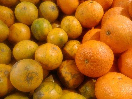 Orange, Fruit, Lemon, Citrus, Fresh, Juicy, Healthy