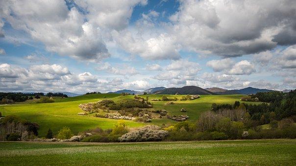 Spring, Sun, Nature, Meadow, Landscape, Sky, Field